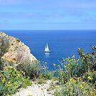 Springtime sailing by Fay  Hughes