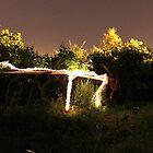 Sparkling Woods by Omar Dakhane