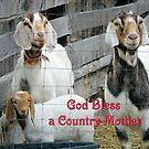 God Bless a Country Mother  by Betty E Duncan © Blue Mountain Blessings Photography