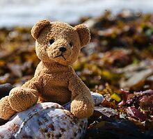 Trapped In Seaweed by Susie Peek