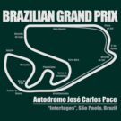 Brazilian Grand Prix (Dark Shirts) by oawan