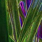 More Monkey Grass by aprilann
