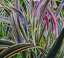 And More Monkey Grass by aprilann