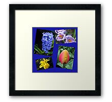 The Sweetness of Spring Floral Collage Framed Print