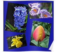 The Sweetness of Spring Floral Collage Poster