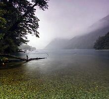 Lake Gunn in the Rain by Michael Treloar