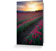 Skagit Valley Dawn Greeting Card