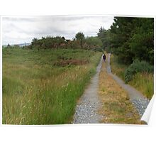 Walking in Glen Veagh Poster
