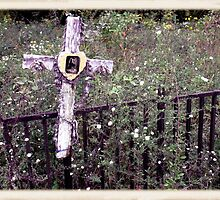 """THE CEMETERY""... a Series... #11 Over the Fence by © Bob Hall"