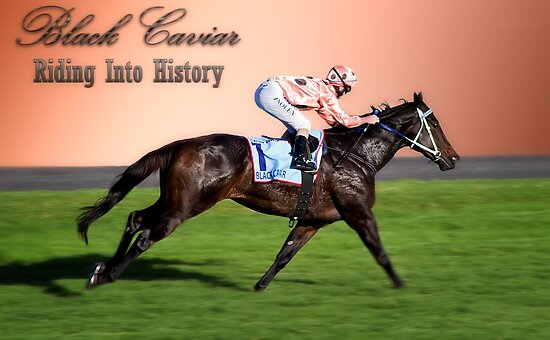Black Caviar by Shannon Rogers