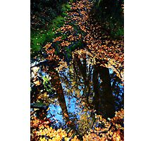 Carpeted & Reflected Hounslow Track Photographic Print