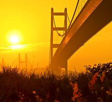 Tsing Ma Bridge in Hong Kong at sunset by kawing921