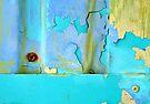 Aqua is the New Chartreuse by vertigoimages