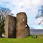Crickhowell Castle by Paula J James