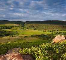 Barden Moor From Rough Haw, Yorkshire Dales by Jim Round