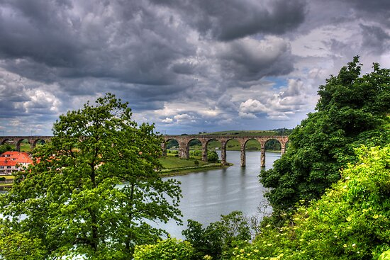 Royal Border Bridge III by Tom Gomez