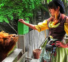 Stable Girl Feeds the Scottish Highland bull by bannercgtl10