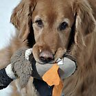 This is MY Goose!! by Dlouise