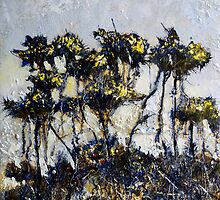 Gorse at Port Mulgrave by Sue Nichol