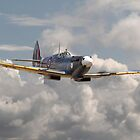 Spitfire - 145 Sqdn RAF by warbirds