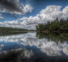 Lynx Lake Reflect by Bob Larson