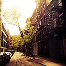 Sunlit Street - Greenwich Village - New York City by Vivienne Gucwa
