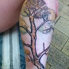 my own skin canvas - the tree by dallys