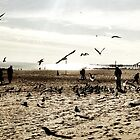 Coney Island Seagulls by ARPunk