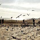 Coney Island Seagulls by ARPunk
