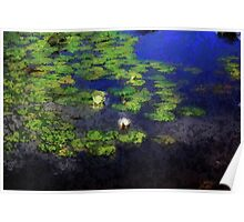 *Lily Pond Impression Painting* Poster
