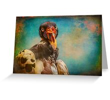Finer Feathered Friends: Penelope, Queen of the King Vultures Greeting Card