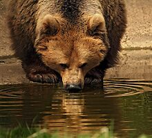 Thirst Quenching by Mark Hughes