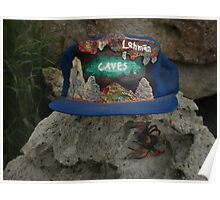 Lehman Caves / fire painting on cap artwork \ and Wolf Spider Poster