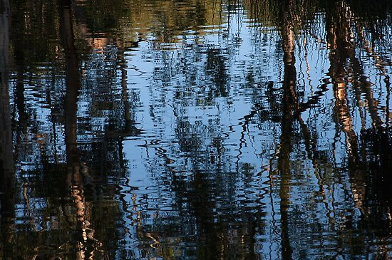 Reflections, Lake at K1 Winery by Adam Jan Dutkiewicz