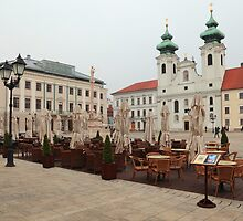 Historic Széchenyi Square II by zumi