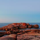 dusk, coastline rocks. eastcoast, tasmania by tim buckley | bodhiimages photography