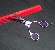 Scissors and Comb by UnUnique