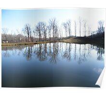 Pond At farm Poster