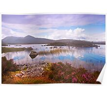 Colorful World of Rannoch Moor. Scotland Poster