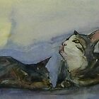 Study for a collection of cats by ajnorthover