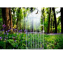 gateway to paradise Photographic Print