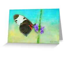 Butterfly on a Flower Greeting Card