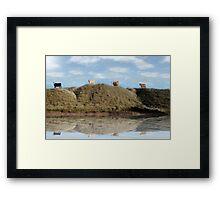 highest pasture view reflection Framed Print