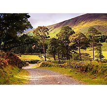 Celtic Spirit. Wicklow Mountains. Ireland Photographic Print