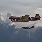 P40 - Flying Tigers by warbirds