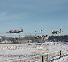 Spitfire - Home is the Hunter by warbirds