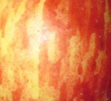 Apple by rafi talby Sticker