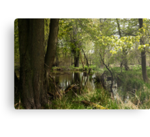 White River Landscape 6748 Metal Print