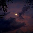 Stormy Moon by BarbL