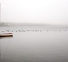 A lone day sailer in the fog by Debra Fedchin